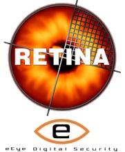Eeye retina